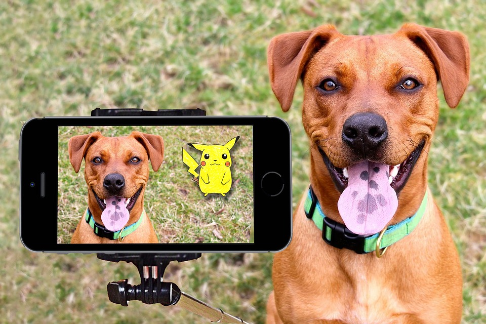 smartphone video-quer