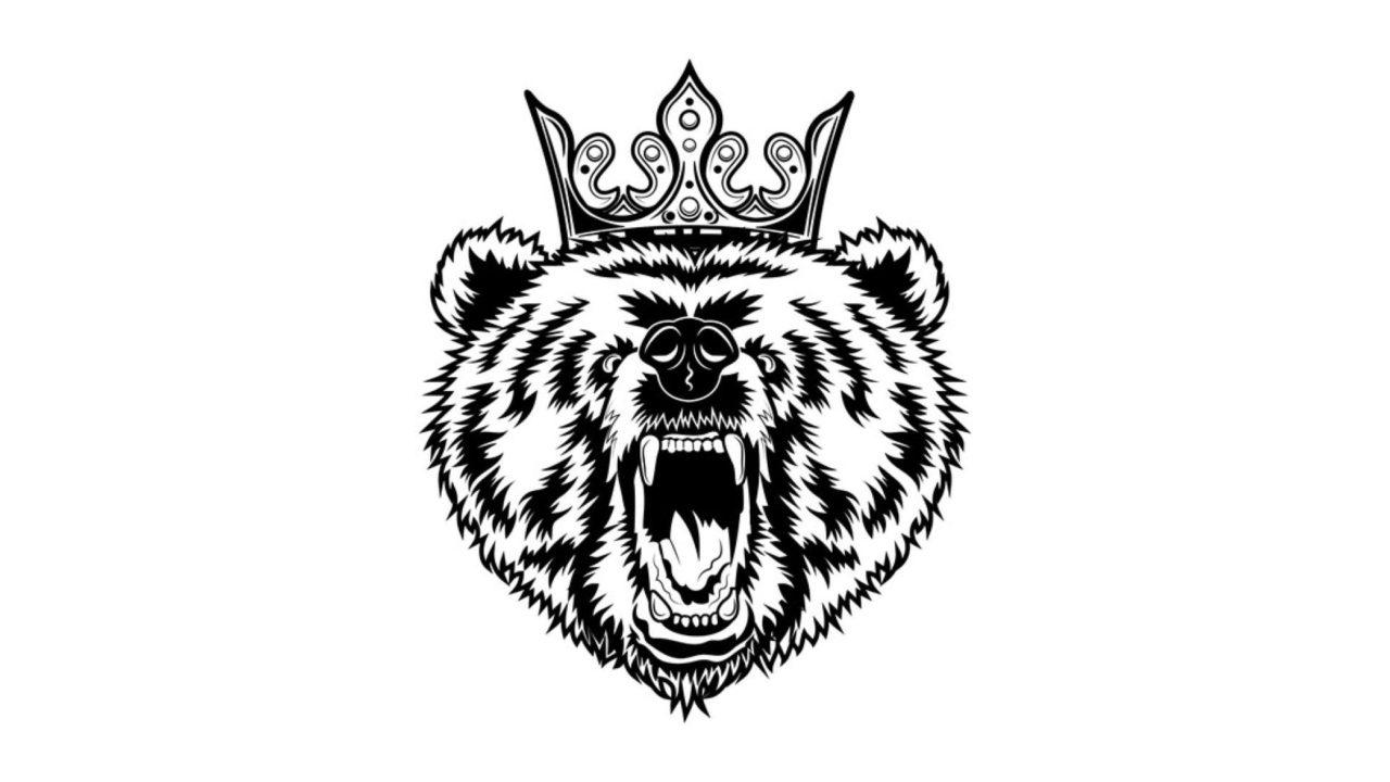 Contentbär is King