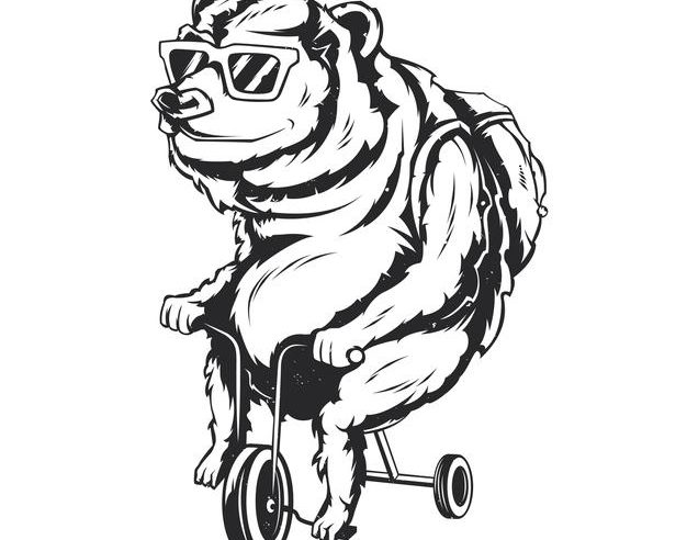 Contentbär auf Fahrrad mit Sonnenbrille