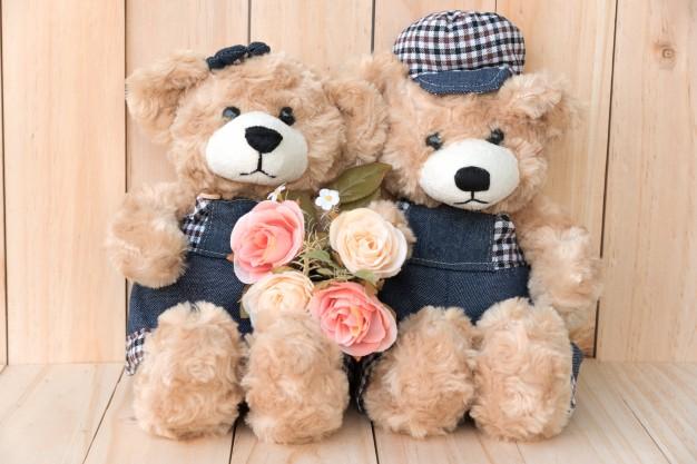 contentbaer-teddybaeren-zwillinge